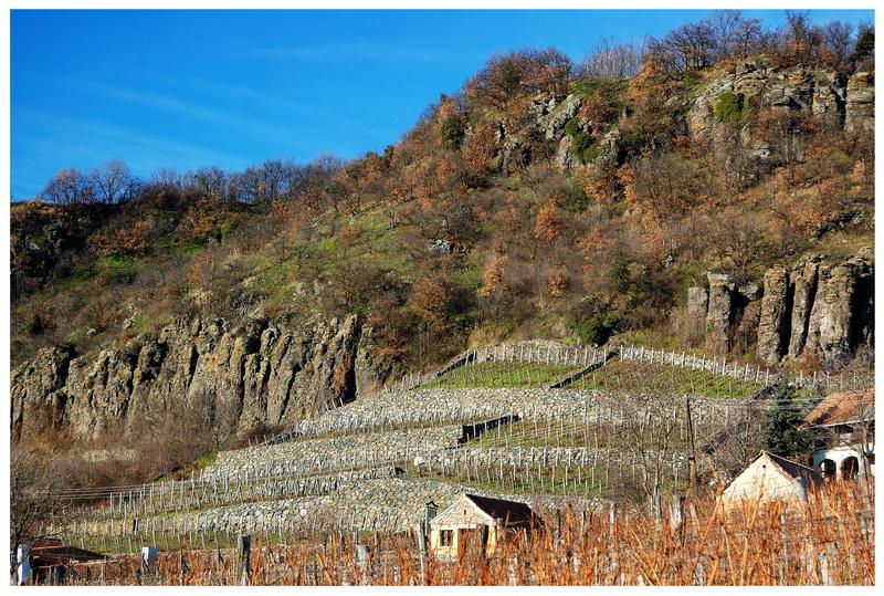 Za winem na Węgry