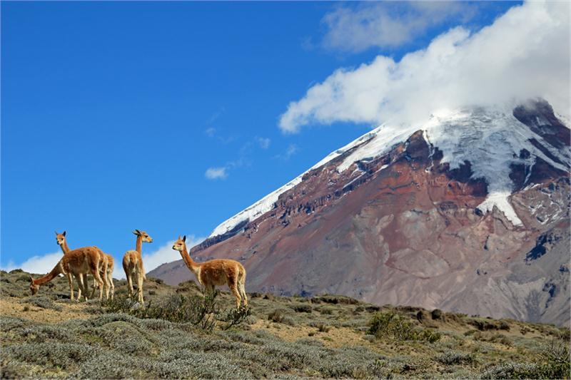 Zachwycające krajobrazy Ekwadoru